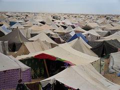 Campamento saharaui