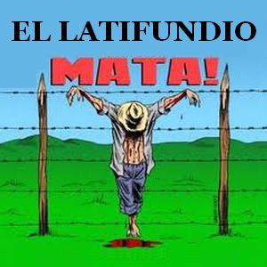 latifundio_mata