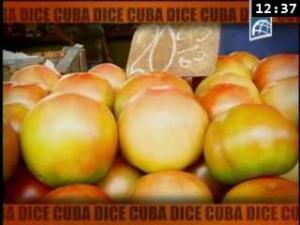 Cuba_dice