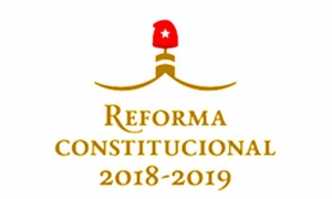 Nueva Constitución para Cuba: luces y reclamos. Por Luis Toledo Sande